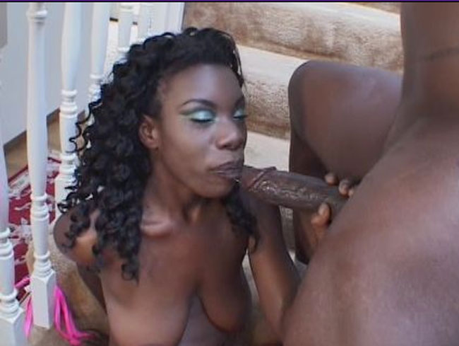Top paid adult website to watch ebony porn videos.