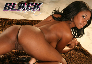 Blacklust Paysite Among The Finest Ethnic Porn Sites