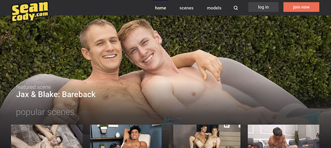 Great adult site to access hot gay flicks