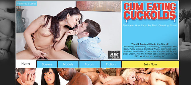 Top adult website to have fun with amazing cuckold HD videos
