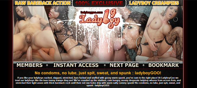 Popular ladyboy porn paysite with HD content